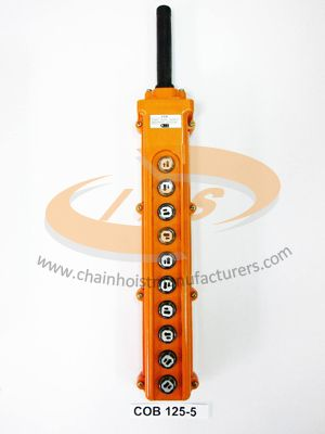 10 Buttons Crane Switch Control